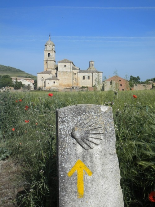 Camino frauen kennenlernen [PUNIQRANDLINE-(au-dating-names.txt) 63